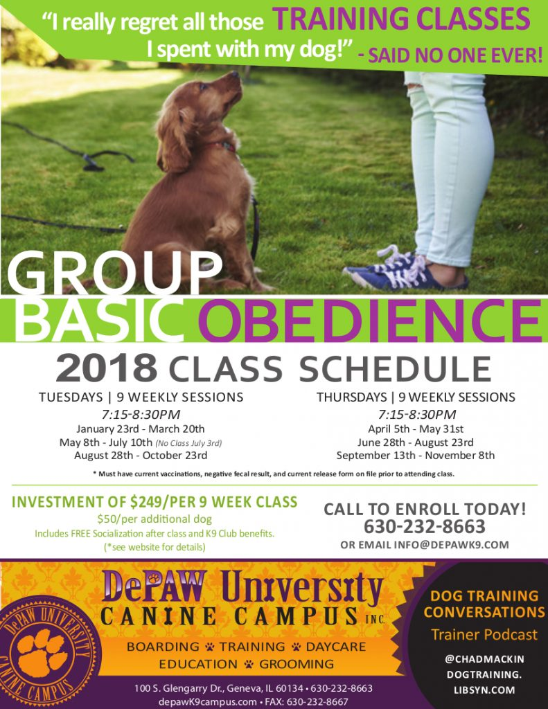 Group Basic Obedience Class Depaw University Canine Campus
